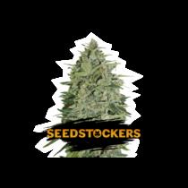 Seedstockers Super Skunk Autoflower 13,30,- €-tól