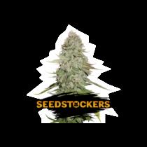 Seedstockers Gorilla Glue 26,64,- €-tól
